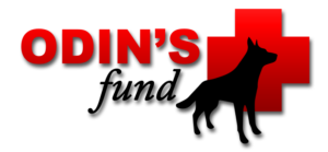 Odin's Fund Logo